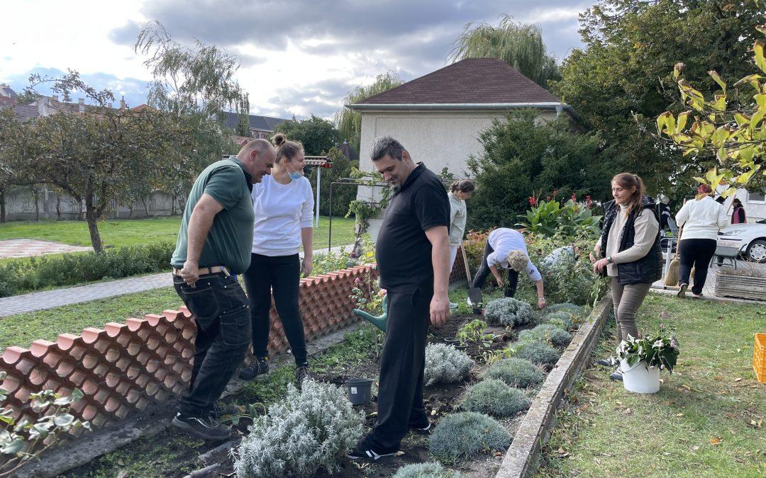 Kertészkedéssel építettük a csapatot